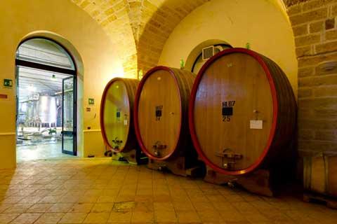 Cantina Leone de Castris – Museo del Vino